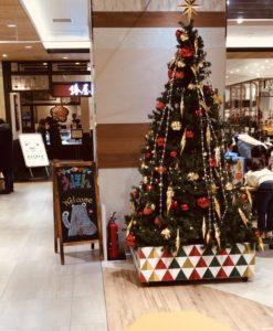 国分寺中古絵本フェアの会場前クリスマスツリー